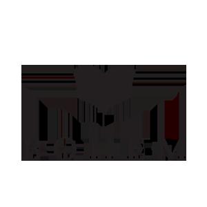 logo-bohem2
